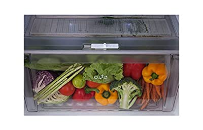 LG GL-M292RLTL Double-door Refrigerator (258 Ltrs, 4 Star Rating, Platinum Silver)