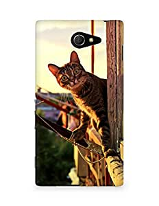Amez designer printed 3d premium high quality back case cover for Sony Xperia M2 D2302 (Funny Cat)