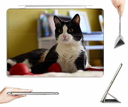irocket-ipad-mini-1-2-3-case-transparent-back-cover-black-and-white-cat-auto-wake-sleep-function
