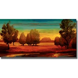 Radiant by Neil Thomas Premium Gallery Wrapped Canvas Giclee Art (Ready to Hang)