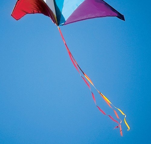 5-ft Tricolor Kite Tail Red/Orange/Yellow