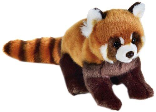 national-geographic-770716-panda-roux