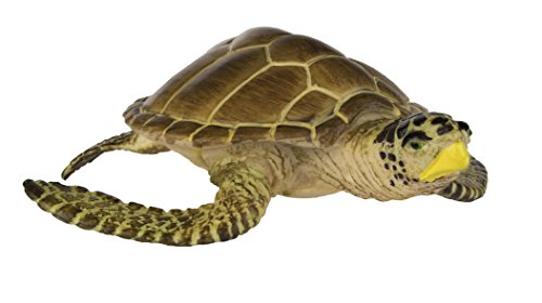Safari Ltd  Wild Safari Sea Life Loggerhead Turtle