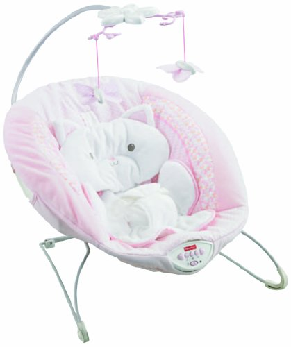 Fisher-Price My Little Snugakitty Bouncer