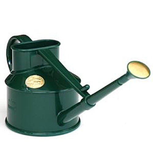 Bosmere V127GR Haws Indoor Plastic 1-Pint/0.5-Liter Watering Can, Green