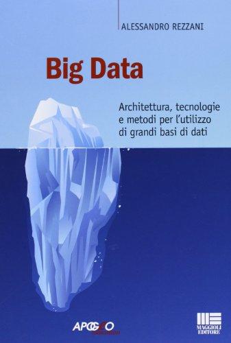 Big data Architettura tecnologie e metodi per l'utilizzo di grandi basi di dati PDF