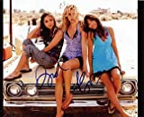 SUITE LIFE on DECK (Alyson Michalka & Brenda Song) 8x10 Cast Photo Signed In-Person