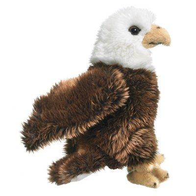 Wild Life Artist Bald Eagle