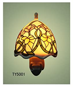 Plug-in Decorative Night Light