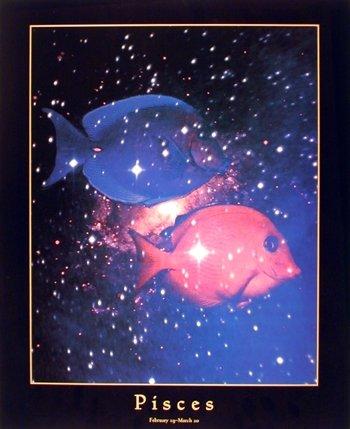 Astrology-Pisces-Feb-20-Mar-20-Wall-Decor-Art-Print-Poster-16x20
