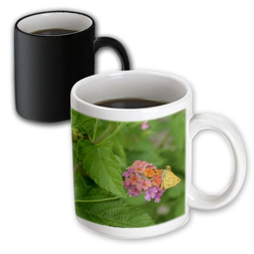 Mug_59191_3 Whiteoak Photography Floral Prints - Little Butterfly On Tiny Flowers - Mugs - 11Oz Magic Transforming Mug