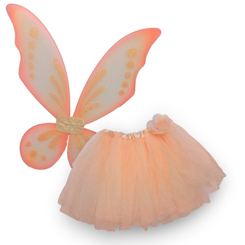 Fairy Costume 2 Pieces Set. Pixie Wings and Rose Tutu