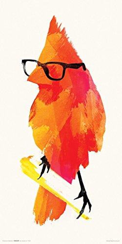 Robert Farkas Orange Hipster Bird Modern Contemporary Animal Lifestyle Decorative Art Poster Print 12x24