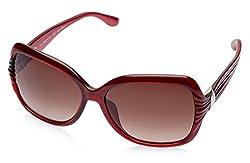 Salvatore Ferragamo Oversized Sunglasses (Red) (SF649S|624|60)