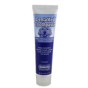 Davis DentaMed Beef Toothpaste for Dogs - 4.5 Oz.