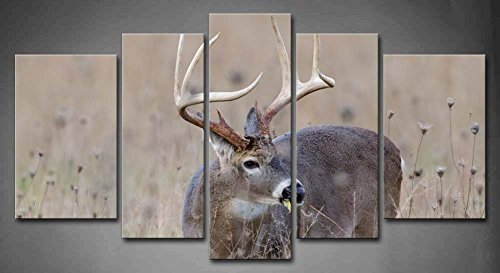 5 Panel Wall Art Whitetail Deer Buck In A Foggy Field Painting The Picture Print On Canvas Animal Pictures For Home Decor Decoration Gift Piece (Stretched By Wooden Frame,Ready To Hang)