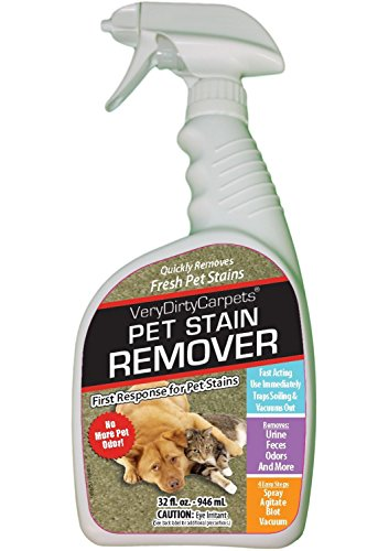 Cleaning Dog Vomit From Carpet Images Citrus