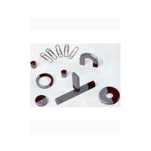 Toysmith Magnet Set