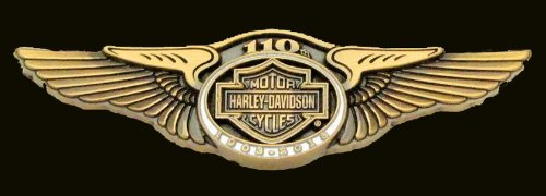 HARLEY DAVIDSON 110TH ANNIVERSARY WINGS JACKET VEST PIN