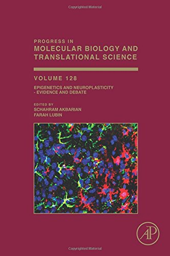 Epigenetics And Neuroplasticity - Evidence And Debate, Volume 128