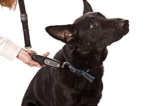 PatentoPet DOG-e-Walk Premium Dog Trainer Black