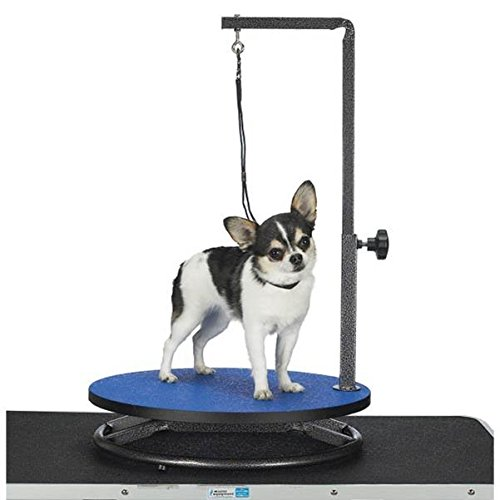 Master Equipment Small Pet Grooming Table, Blue front-313451