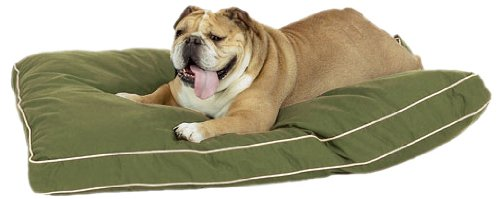 Pet Dreams Ortho Bliss 100-Percent Memory Foam Dog Bed Olive, Small, 24 By 18-Inch