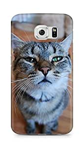 Amez designer printed 3d premium high quality back case cover for Samsung Galaxy S6 (Staring Cat)