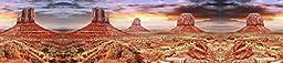Reptile Habitat, Terrarium Background, Cool Desert Sky - (Various Sizes) (20\