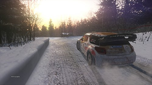 Sebastien Loeb Rally EVO  screenshot