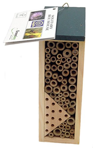 greenkey-664-solitary-bee-and-wasp-house-brown