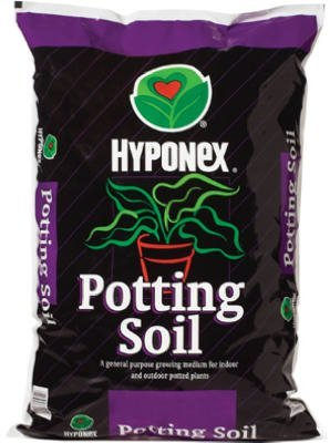 Scotts Organic #72478570 8QTPotting Soil - Buy Scotts Organic #72478570 8QTPotting Soil - Purchase Scotts Organic #72478570 8QTPotting Soil (SCOTTS ORGANIC GROUP, Home & Garden,Categories,Patio Lawn & Garden,Plants & Planting,Soils Fertilizers & Mulches,Soils,Potting Soils)