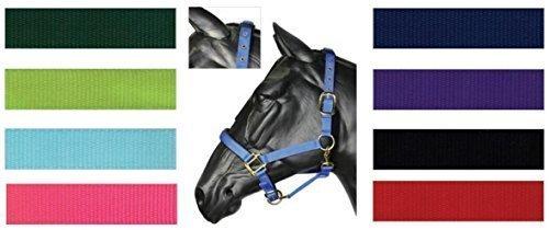 hy-deluxe-collier-de-tete-rembourre-pour-bebe-bleu-poney