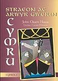 Straeon ac Arwyr Gwerin Cymru: v. 1 (Cyfrol) (Welsh Edition)