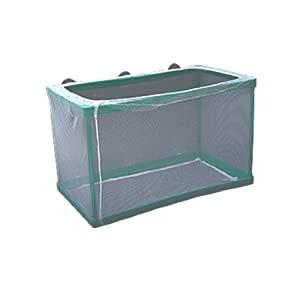 Como Green Fry Hatchery Net Breeder for Fish Tank Aquarium