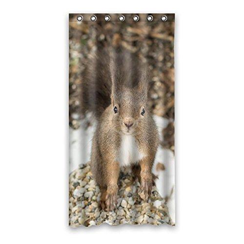 """Mignon peu écureuil dans hiver Rideau de Douche 100% polyester bain décor étanche Generic Rideaux 90 cm x183 cm (36 """"x72"""")"""