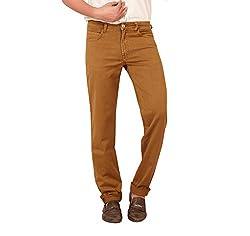 Carrie Men's Regular Fit Jeans (CJ_B342_Brown_38)