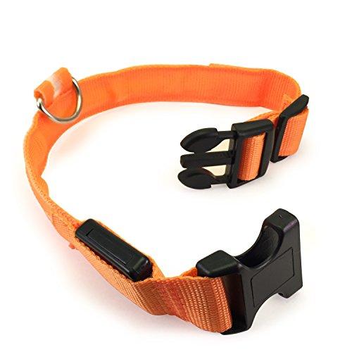 Flashing Dog Collar