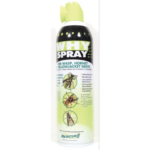 Sterling Rescue WHYSBB12 Why Spray for Wasp Hornet and Yellowjacket Nests