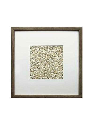 Star Creations Pearl Among Pong Shell & Natural Molding Shadowbox Art