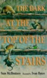 The Dark at the Top of the Stairs (0744554055) by McBratney, Sam