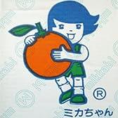 【糖度12度以上】ミカちゃんマークの「静岡:三ケ日青島みかん」 【秀グレード】2Lサイズ 9kg