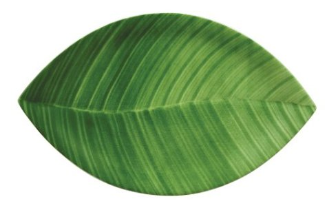 Buy Villeroy & Boch Palm Leaf 13-3/4-Inch Gourmet Plates, Set of 4