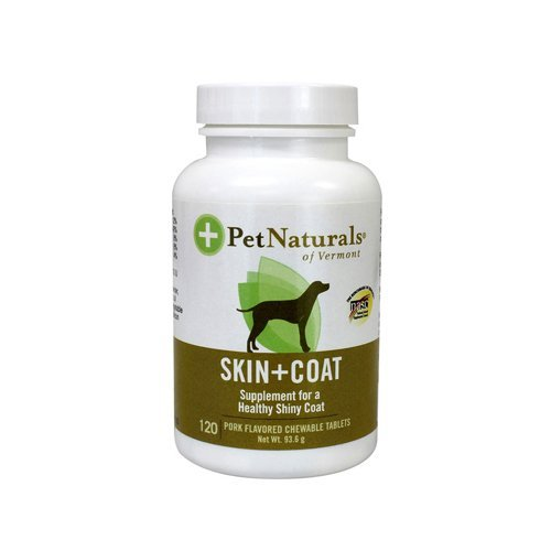 Which Vitamins Have Antioxidant Properties