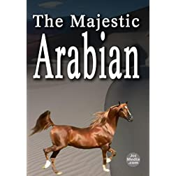 The Majestic Arabian
