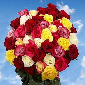 Fresh Cut Roses Delivery 50 Roses 25 Red Roses 25 Color Roses Just Perfect