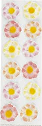 Martha Stewart Crafts Layered Cosmos Stickers