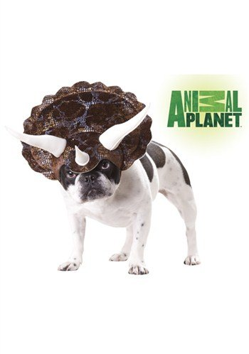 Animal Planet Triceratops Pet Costume