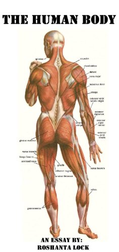 The Human Body: A Scholarly Essay on the 11 major organ systems.