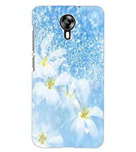 ColourCraft Lovely Flowers Design Back Case Cover for MICROMAX CANVAS XPRESS 2 E313